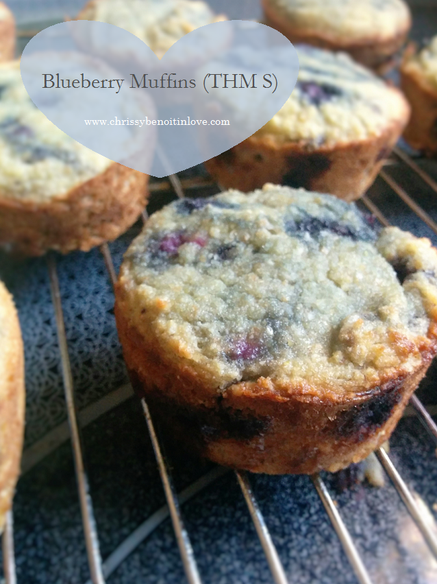 Blueberry or ANYberry Muffins (THM S)