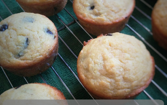 Chocolate Chip Muffins (THM S)