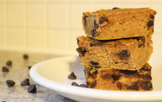 Pumpkin Chocolate Chip Squares (THM S)